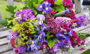 RHS Harlow Carr Flower Show