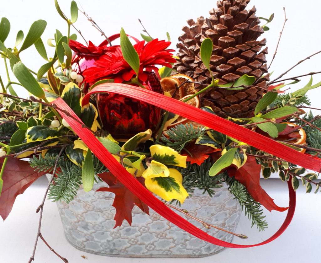 Christmas arrangement fir cones