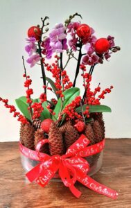 Festive Workshop – Opulent Orchids for Christmas
